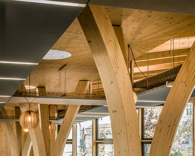 <p><span>The CLT roof of the dining hall is supported by a series of branch-like glulam columns. © Anthony Coleman</span></p>