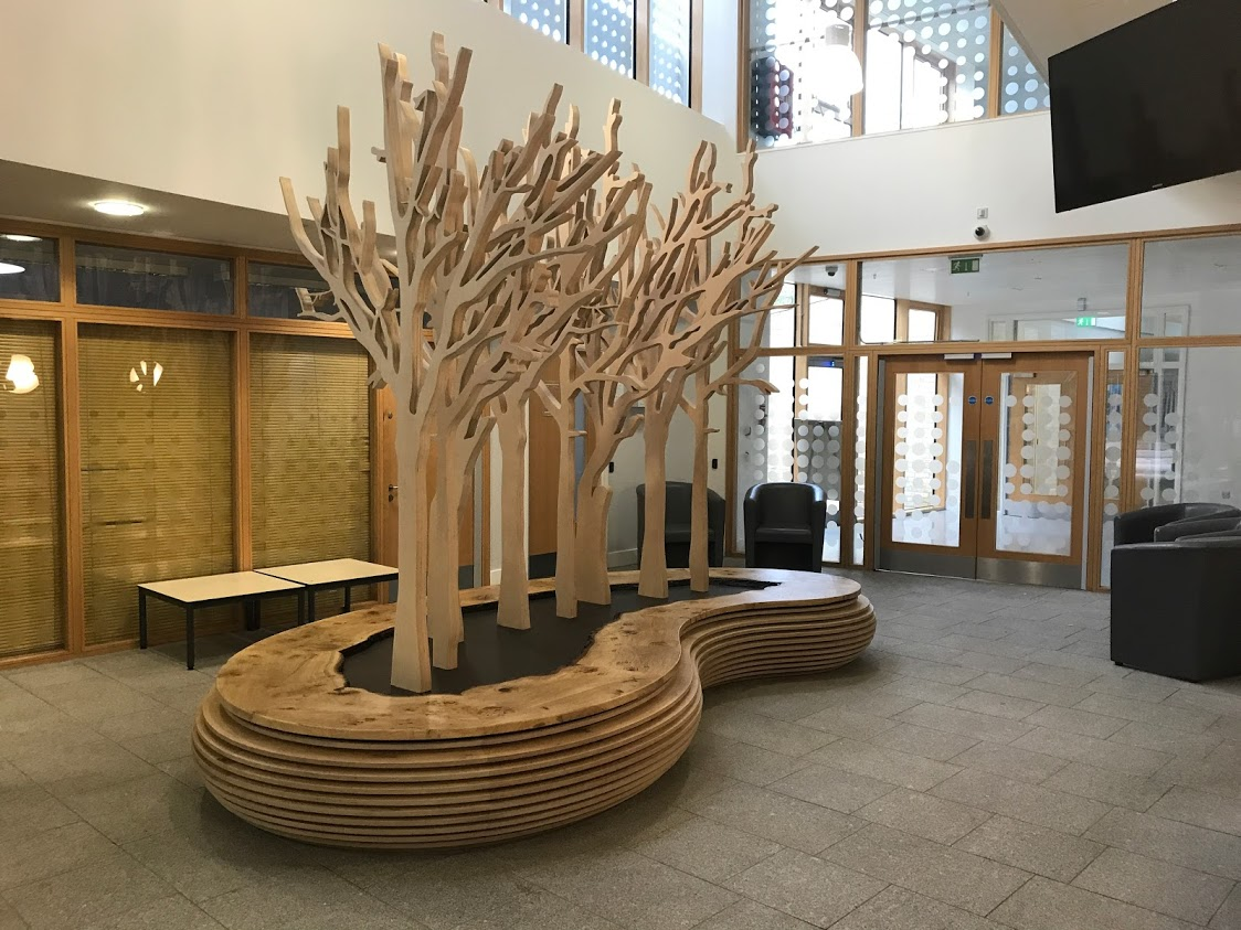 Bespoke Birch Plywood and English Oak Seating for a School