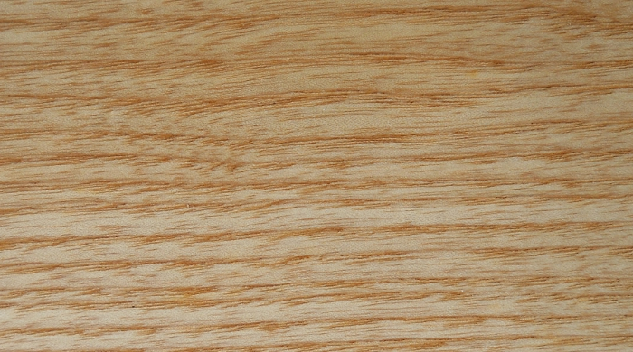 Ash, European: lacquered finish