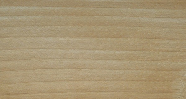 Birch, American: sanded only – no finish applied