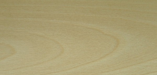 Birch, European: sanded only – no finish applied