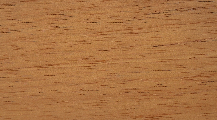 Cedar, Central/South American: lacquered finish