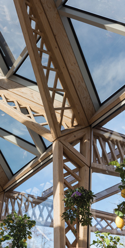 Inspirational Timber Case Studies