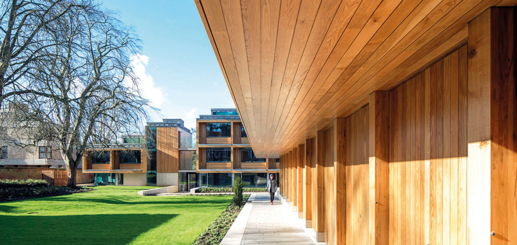<p>An oak-clad CLT canopy cantilevers over the walkway for the full length of the Arts Studio and beyond, creating a cloister-like loggia.</p> <p><span>© Peter Cook</span></p>