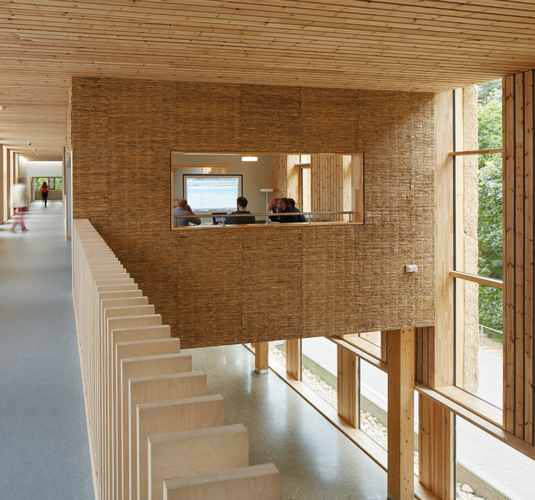 <p><span>Ceilings and walls on the first floor are lined with acoustic timber slats.</span></p> <p><span>© Dennis Gilbert</span></p>