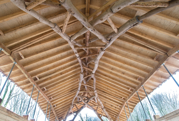 <p>The arched Vierendeel truss is made of twenty tree forks fixed to a top chord of larch poles. © Valerie Bennett and Design + Make students</p>